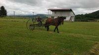 Pri hrabaní futbalového ihriska pomáha v obci Vojkovce aj pán Kandrik Štefan s touto koňskou hrabačkou