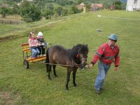 MDD 2013  v obci  Vojkovce  -  pre deti bol pripravený aj poník Pejko